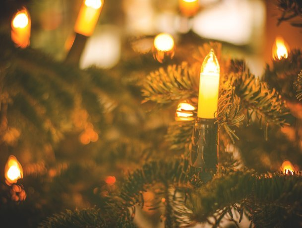WATER YOUR TREE AND AVOID A TRAGEDY THIS CHRISTMAS